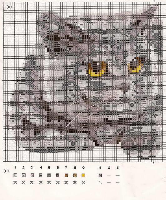 Схема вышивания крестом - Британская кошка