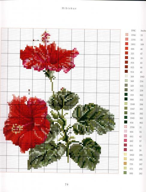 Схема для вышивание крестом - Цветы