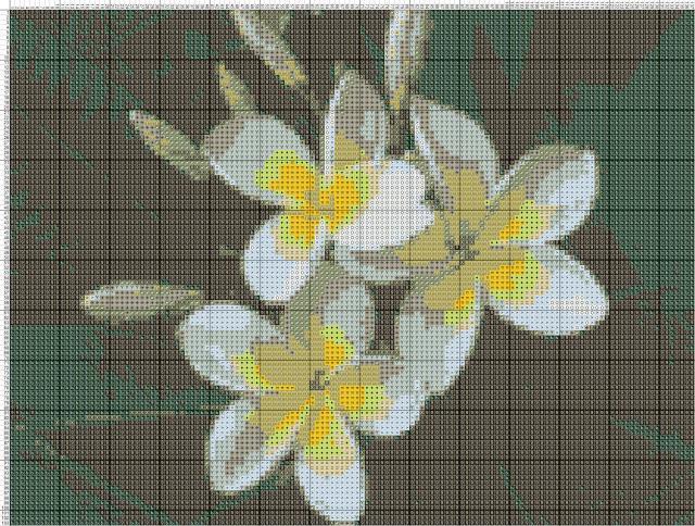 Схема вышивания крестом - Цветы магнолии